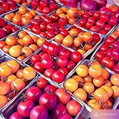 Checkerboard Tomatos