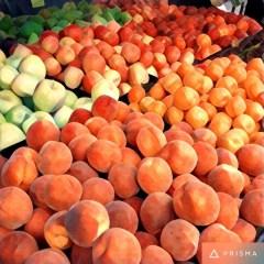 Bountiful Fruits